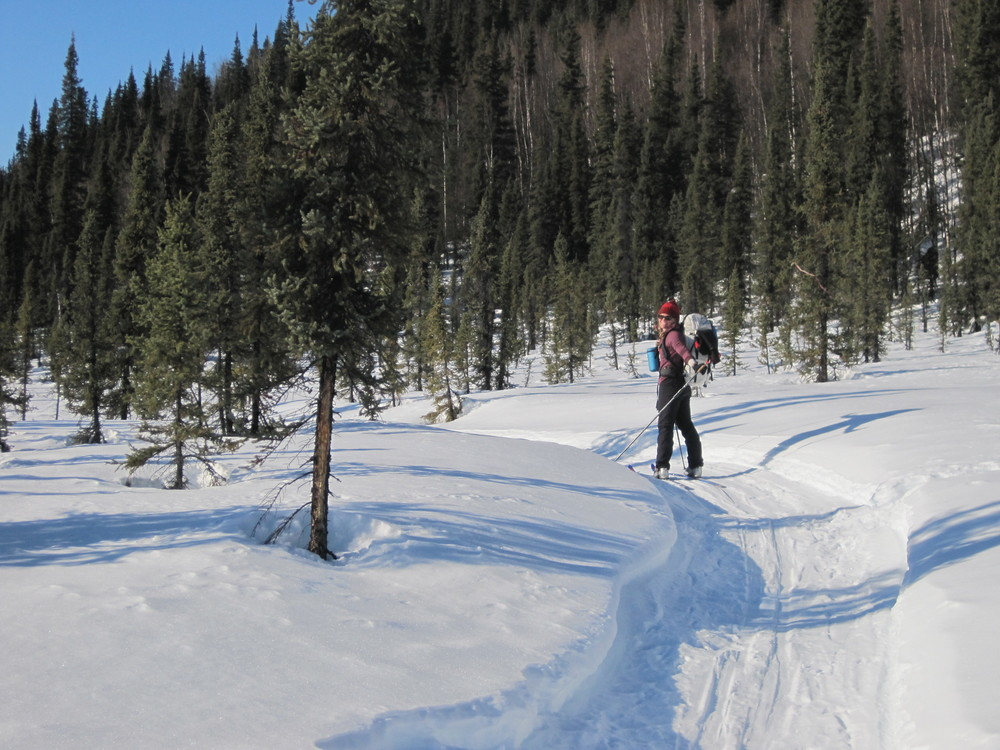 Finally done with bushwacking and happy to be on the final snowmobile trail!  Photo by H. Eisen.