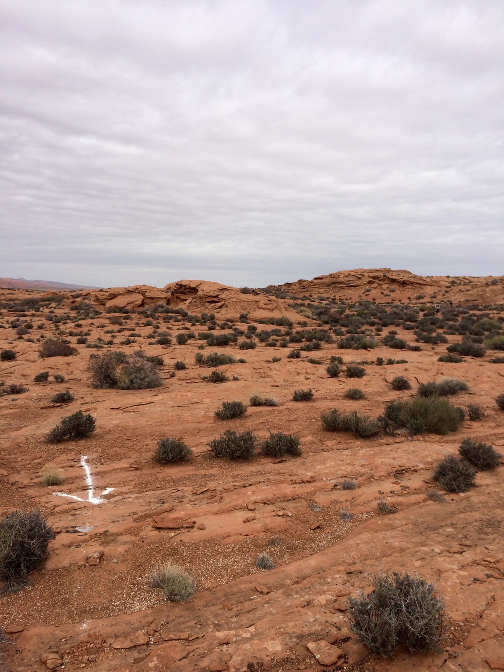 desert traverse (arrow made with flour, not spray paint).  photo by K. Strong.