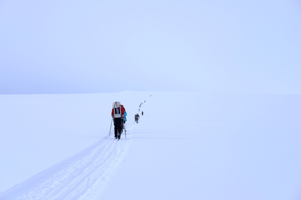 We followed a dog mushing trail for the first couple hours out onto the plain. Photo by K. Strong.