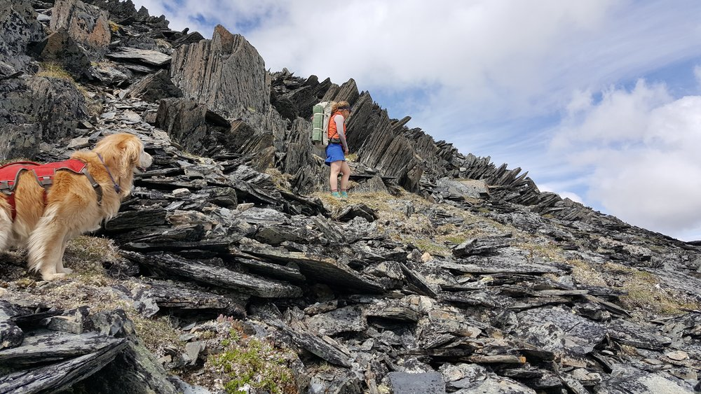 Navigating a particularly rocky section of ridge. Photo by J. Rupp.