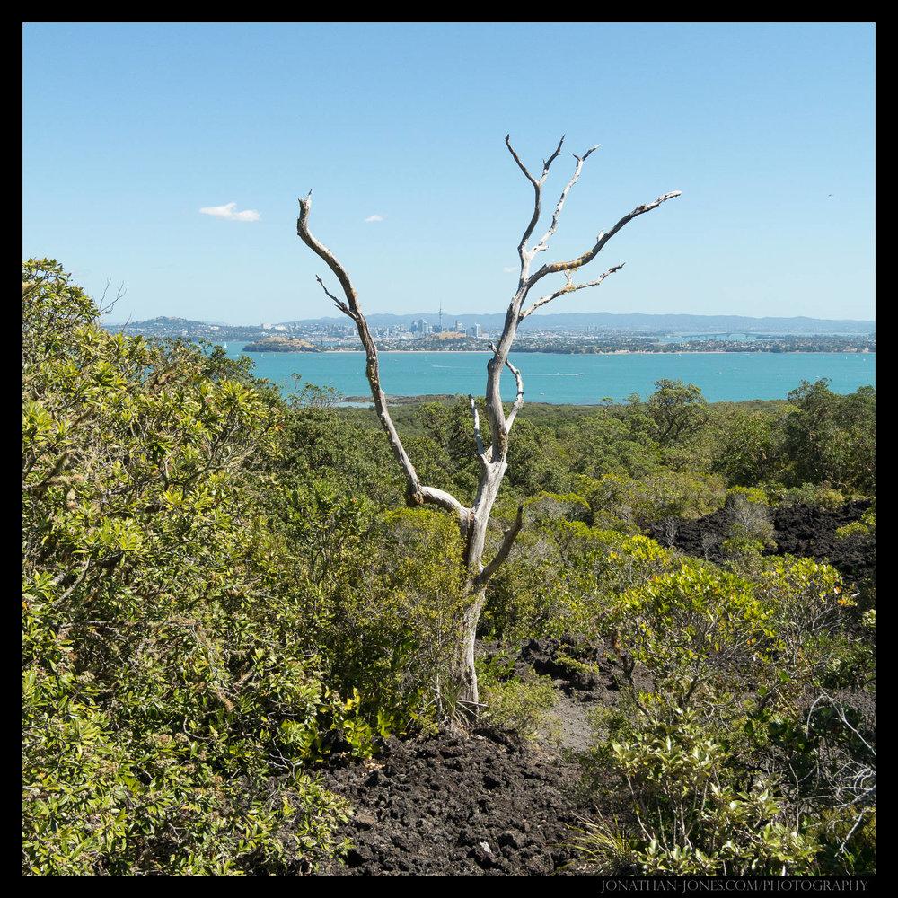 Wangitoto Island, Auckland
