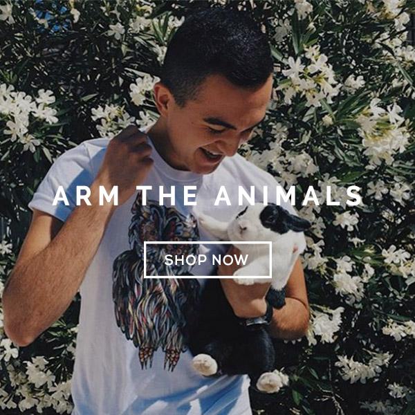 ARM-THE-ANIMALS-SLIDER.jpg