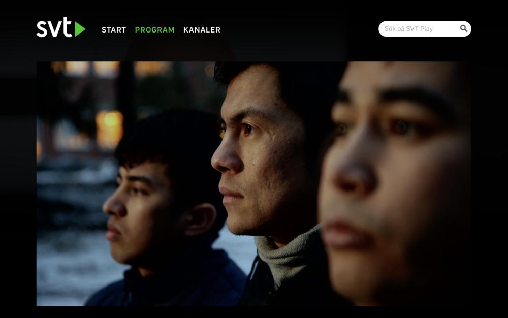 Skärmdump från SVT Agenda 28/1.