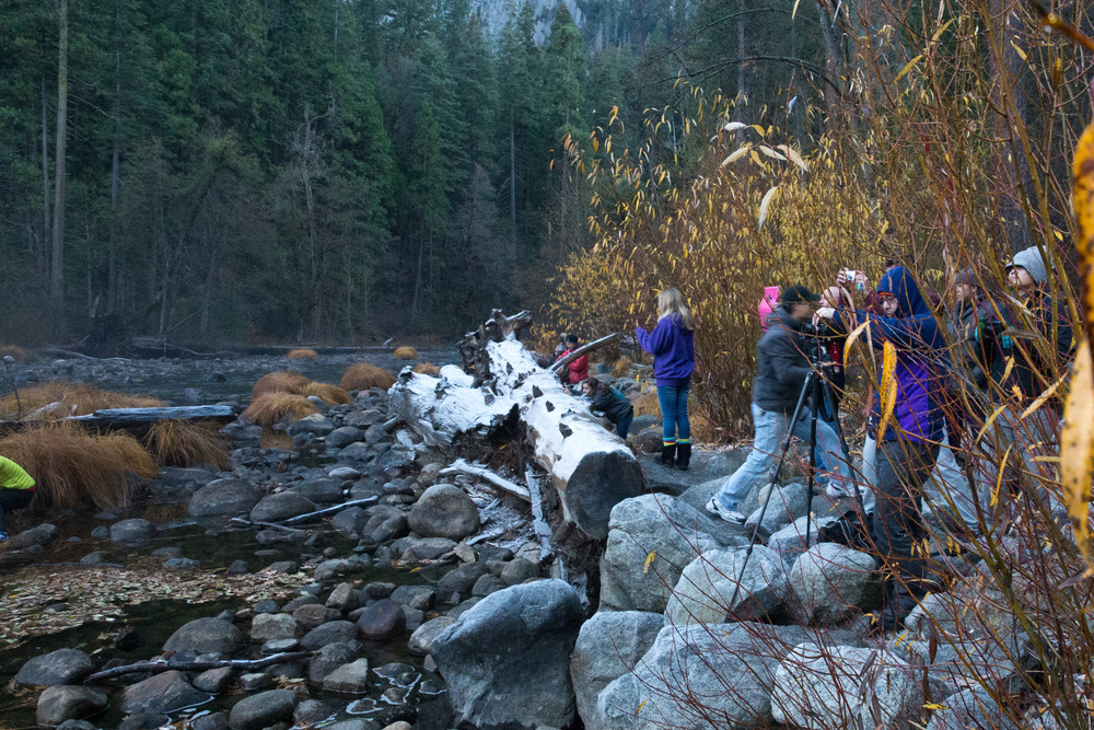 Photographers entrenched behind fallen logs capturing a beautiful sunset down the valley.