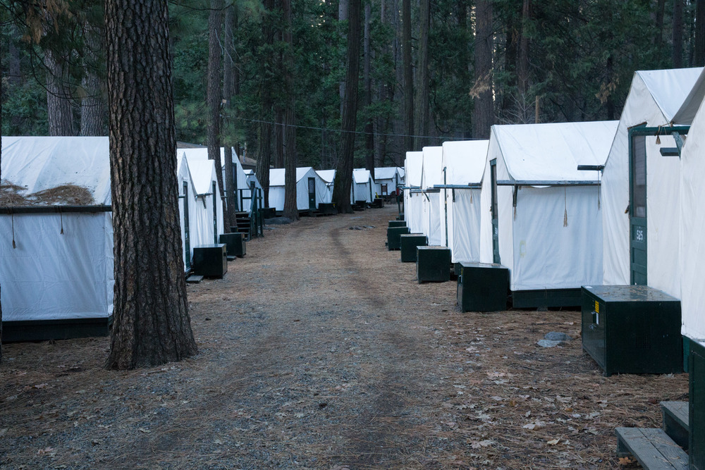 The Temp-RATE-ture canvas tents we stayed in while at Yosemite. Note each one has a food box out front to protect you from inquisitive bears in the night.