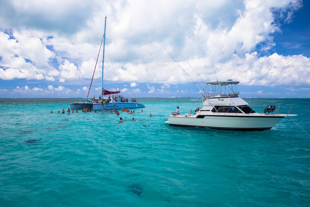Stingray city, a sandbar where the stingrays have been training humans to come and feed them squid for over 50 years.