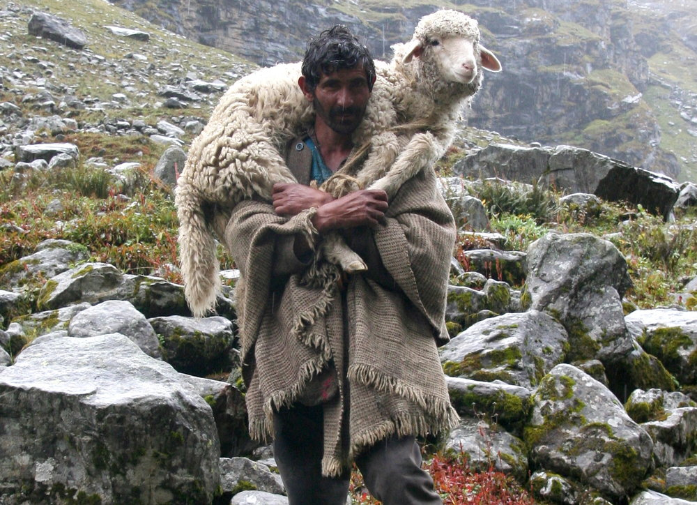 shepherd_on_the_way_to_hampta_pass1.jpg