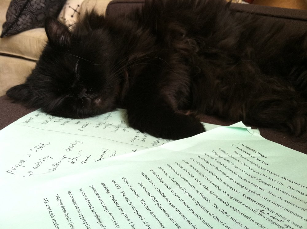 Poe is not amused by academic writing.