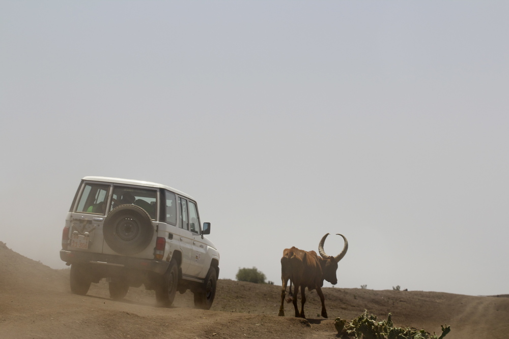 Dustroad.Tigray, Northern Ethiopia