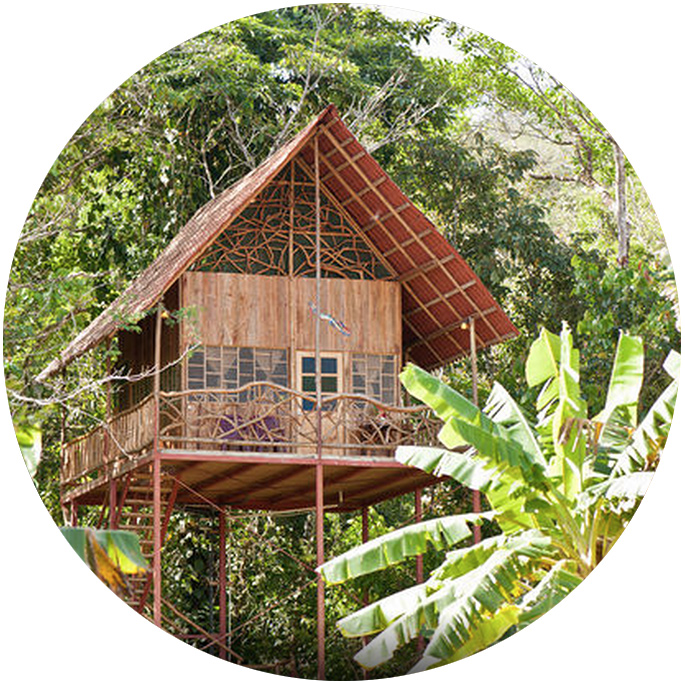 airbnb_rainforest_treehouse_cooper_costa_rica