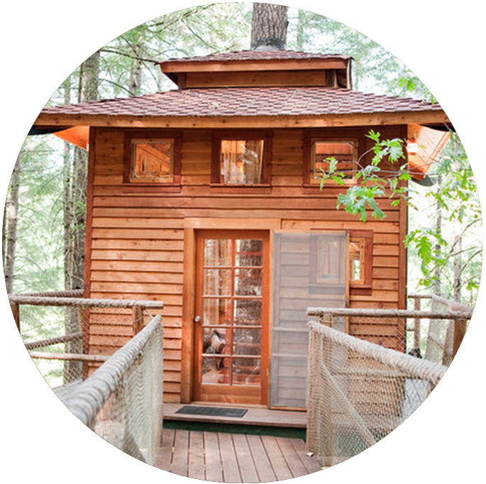 airbnb_shitake_cave_Junction_treehouse.jpg