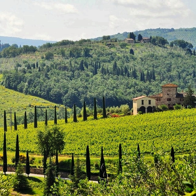 KM Zero Tours : Slow Travel & Farm to Table Eating Tuscany