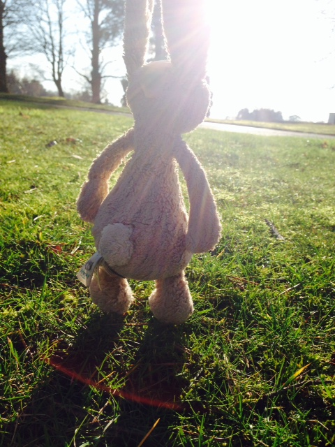 Sutton Hoo lost bunny.jpeg