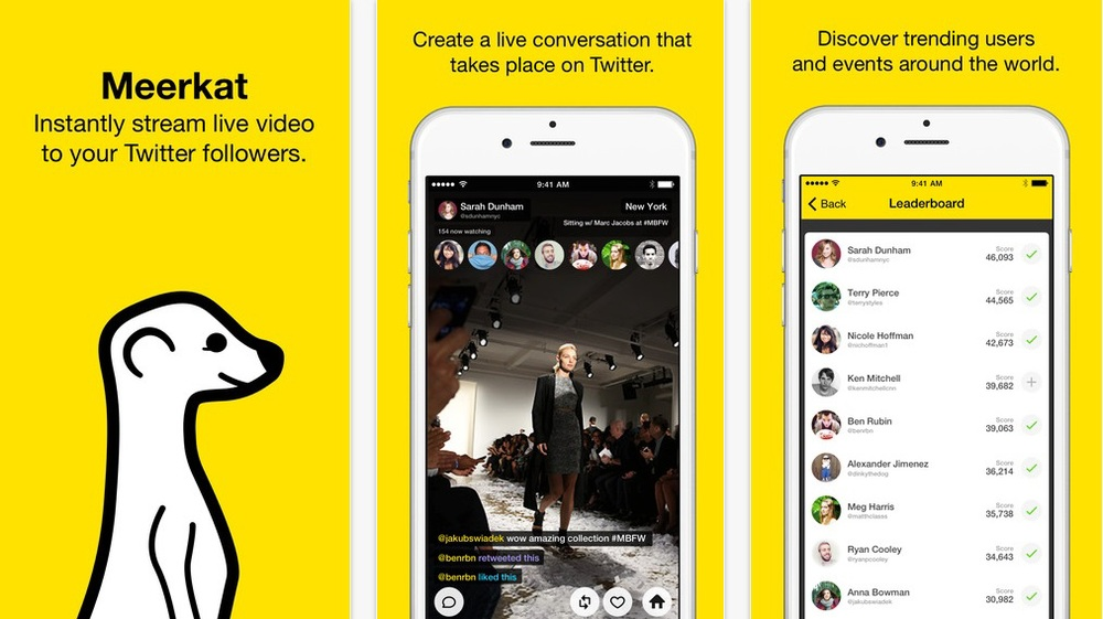 meerkat screengrabs
