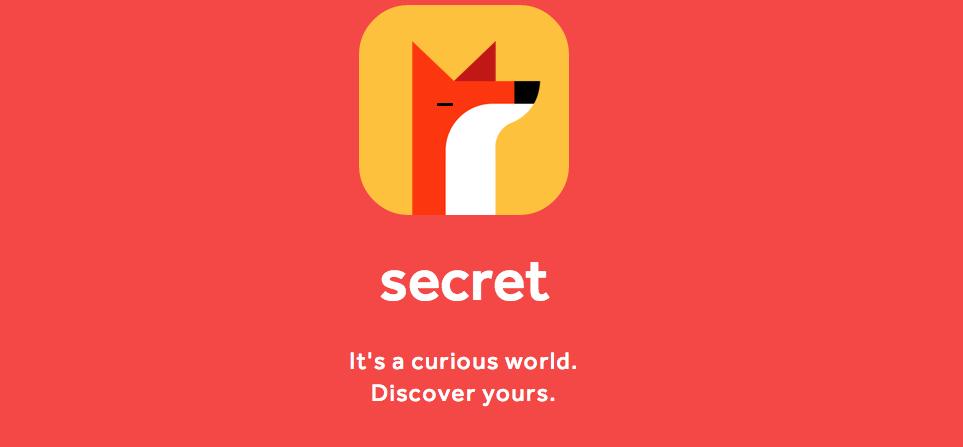 SECRET SOCIAL NETWORK
