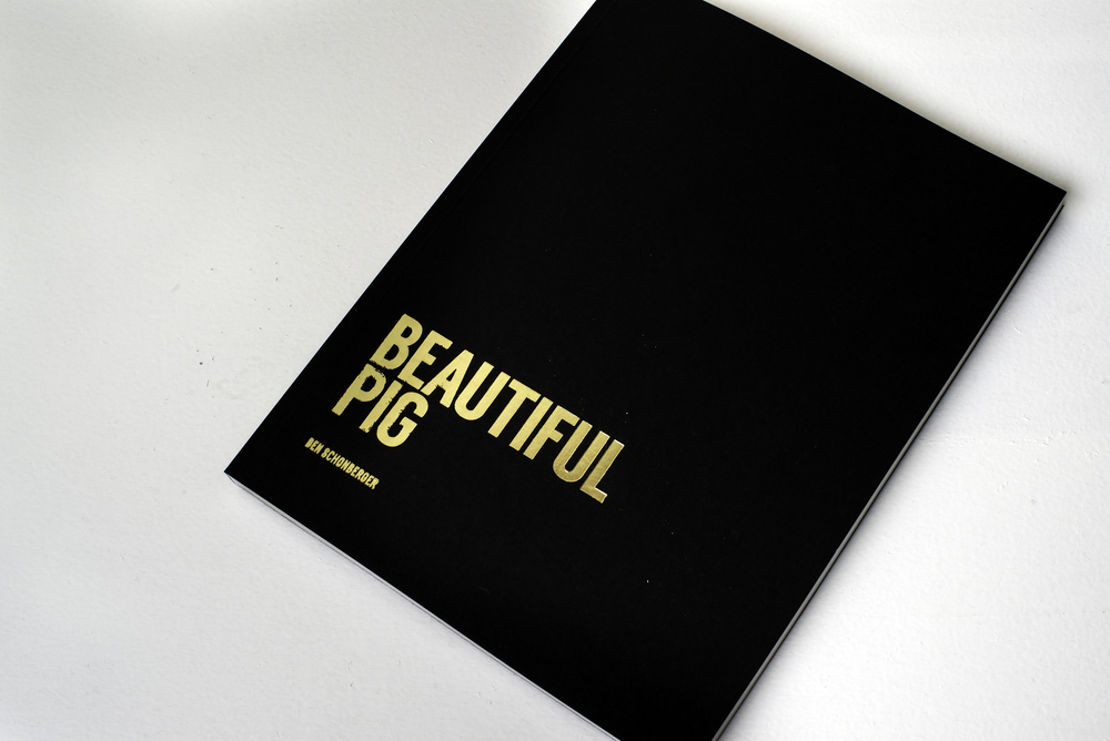 Beautiful Pig - second edition