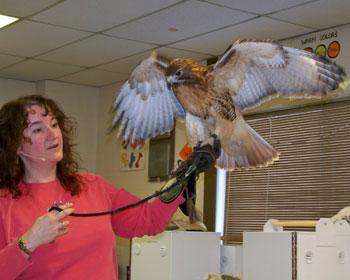 Photo Courtesy: Northeastern New York Wildlife Institute