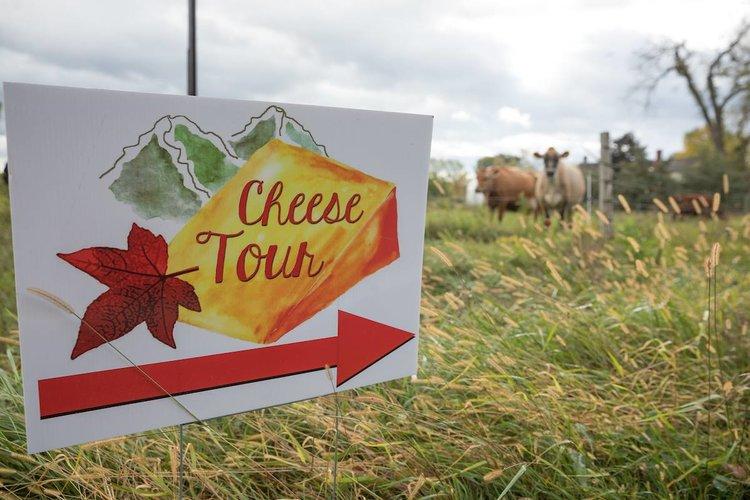cheesetour2018.jpg