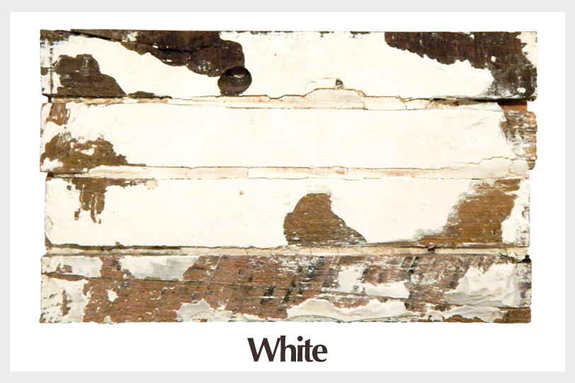 salvalgedwall_paint_white (border).jpg