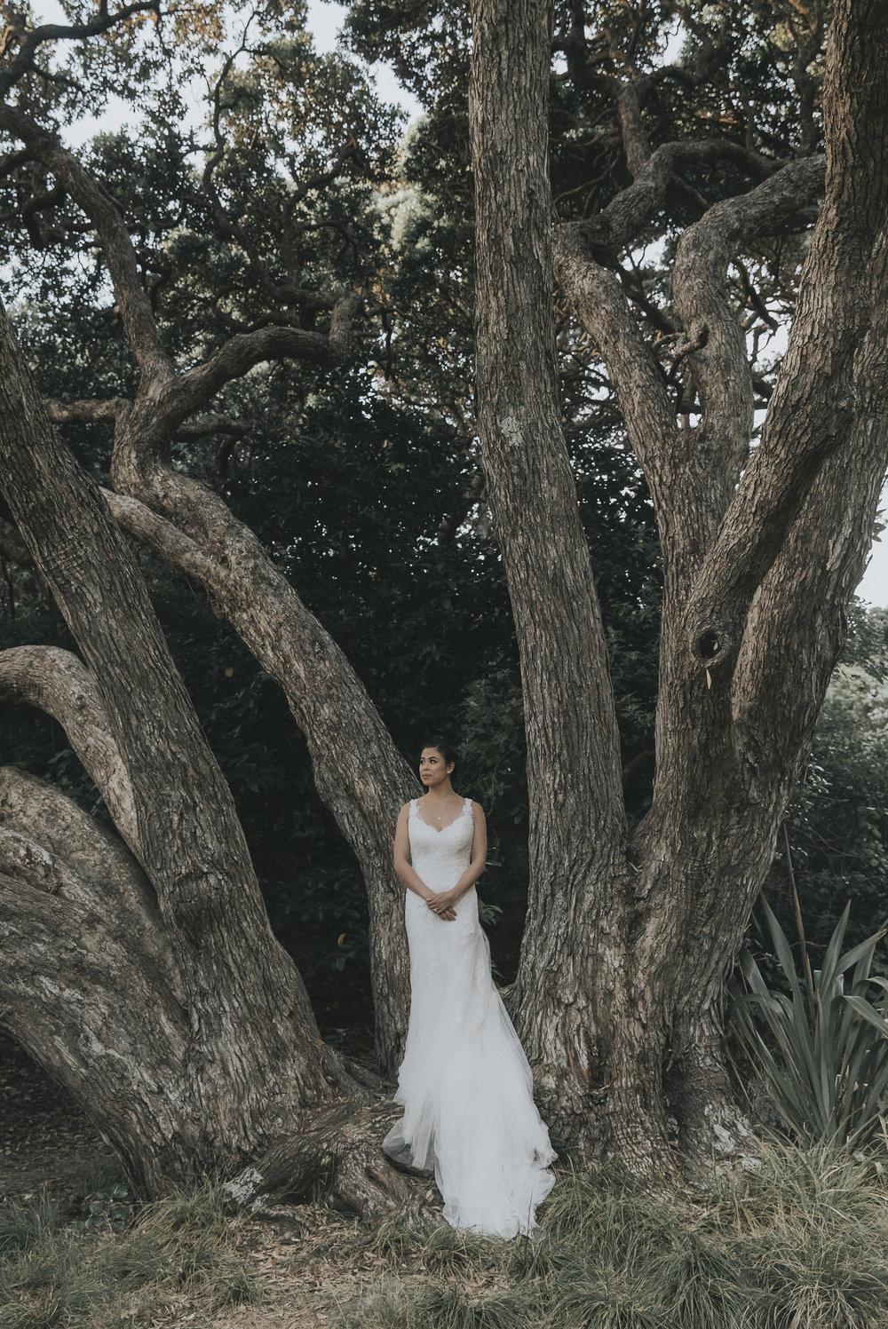 john-david-weddings-new-zealand-wedding-photography-auckland1243.JPG