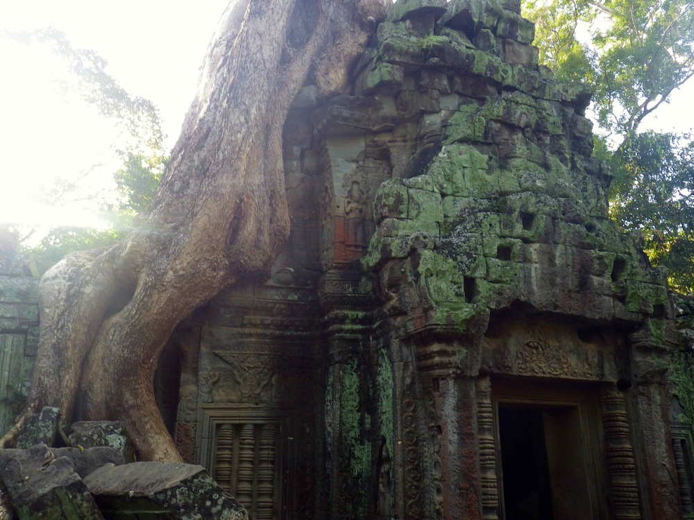 The giants of Ta Prohm Temple