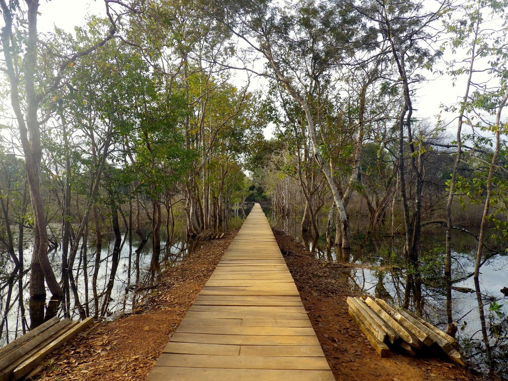 Wooden foot bridge to Neak Pean