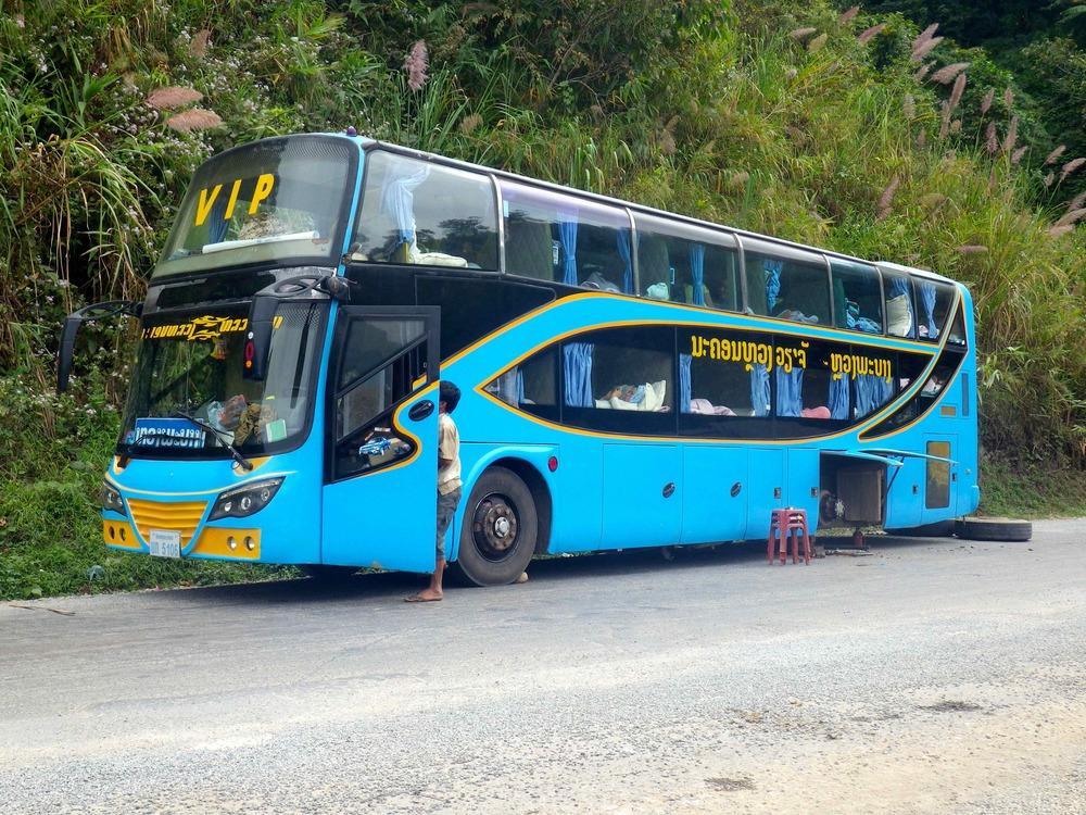 VIP Bus???