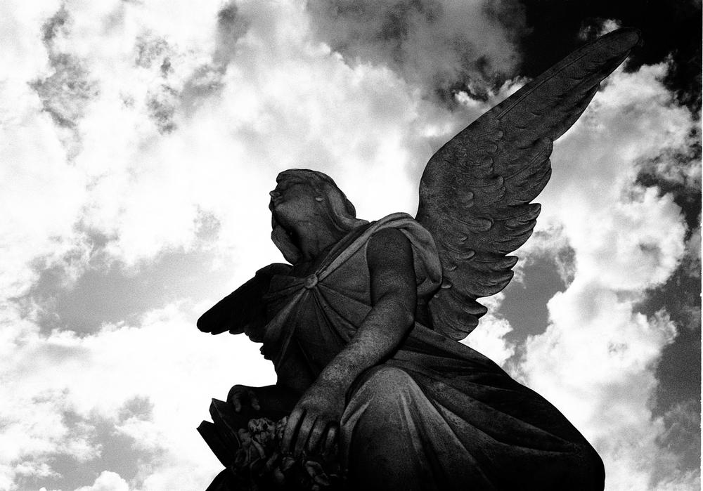 (S)angel1rev2 9.5x13.5Sharp.jpg