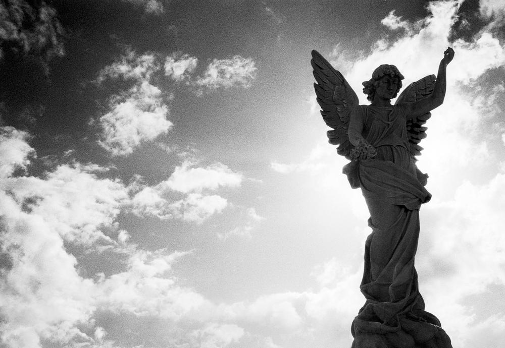 vertical angel(lt.)rev1shar.jpg