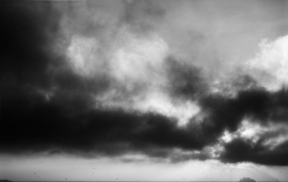 CRW_7798adjnos-Alcatraz.jpg