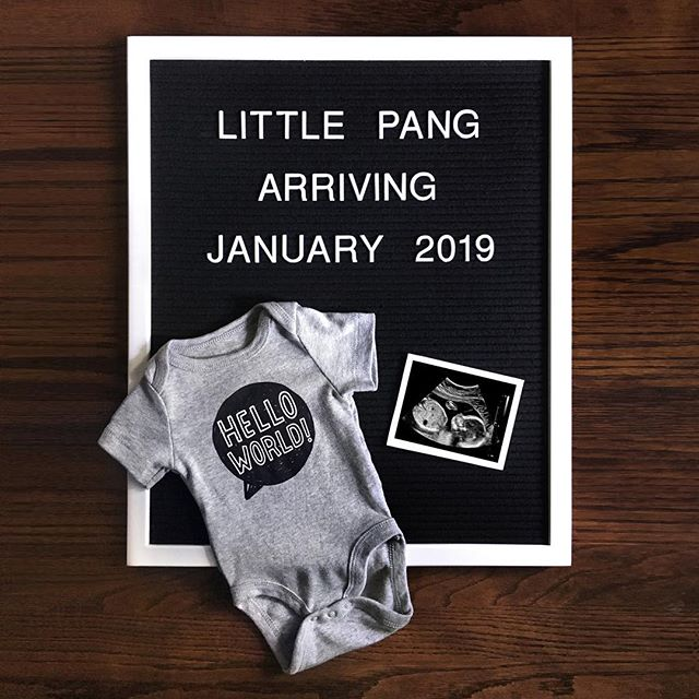 Excited to share that a new little addition will be joining our family early in the new year! #baby #announcement #babyannouncement