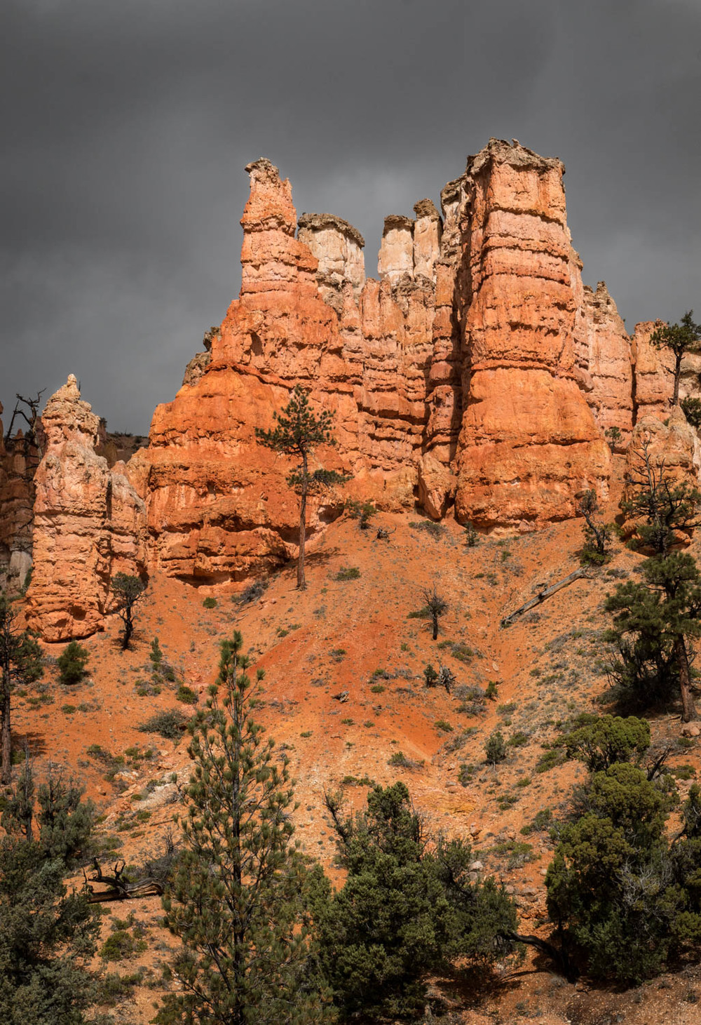 Hoodoos at Kodachrome Basin.jpg