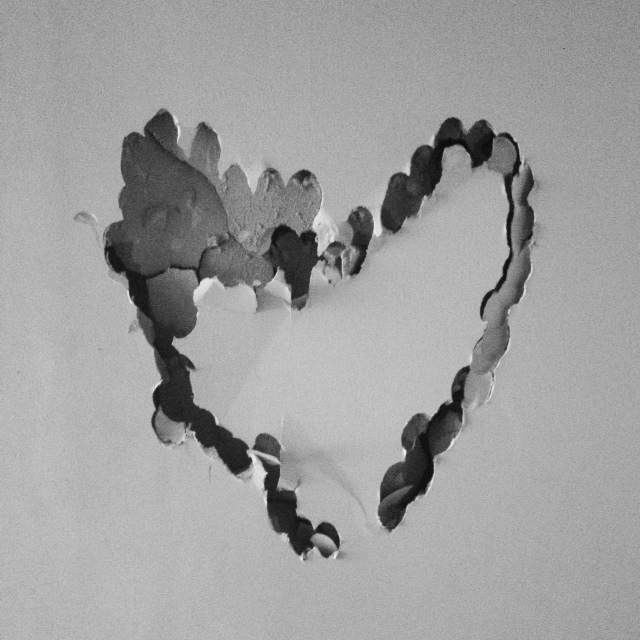 demo-heart.JPG