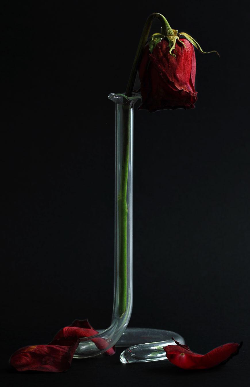 Rose-Vase_V2.jpg