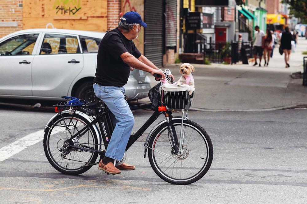 new york city photojournalism  (5 of 30).jpg