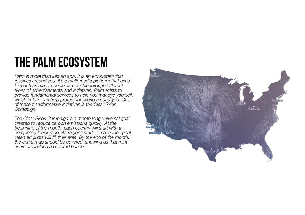 Palm Ecosystem.jpg