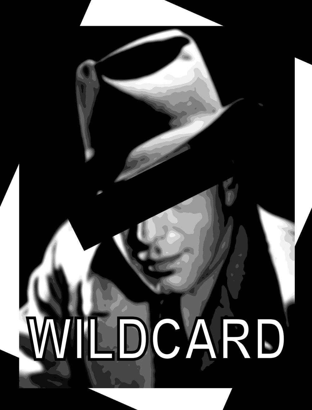 wildcard17.jpg