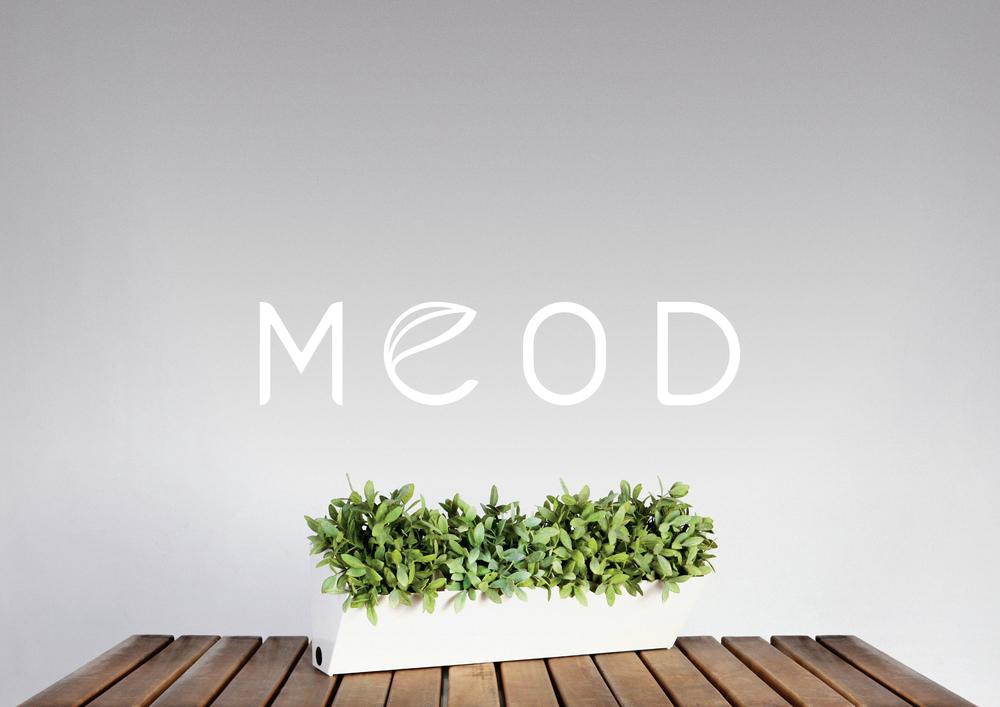 MEOD-03.jpg