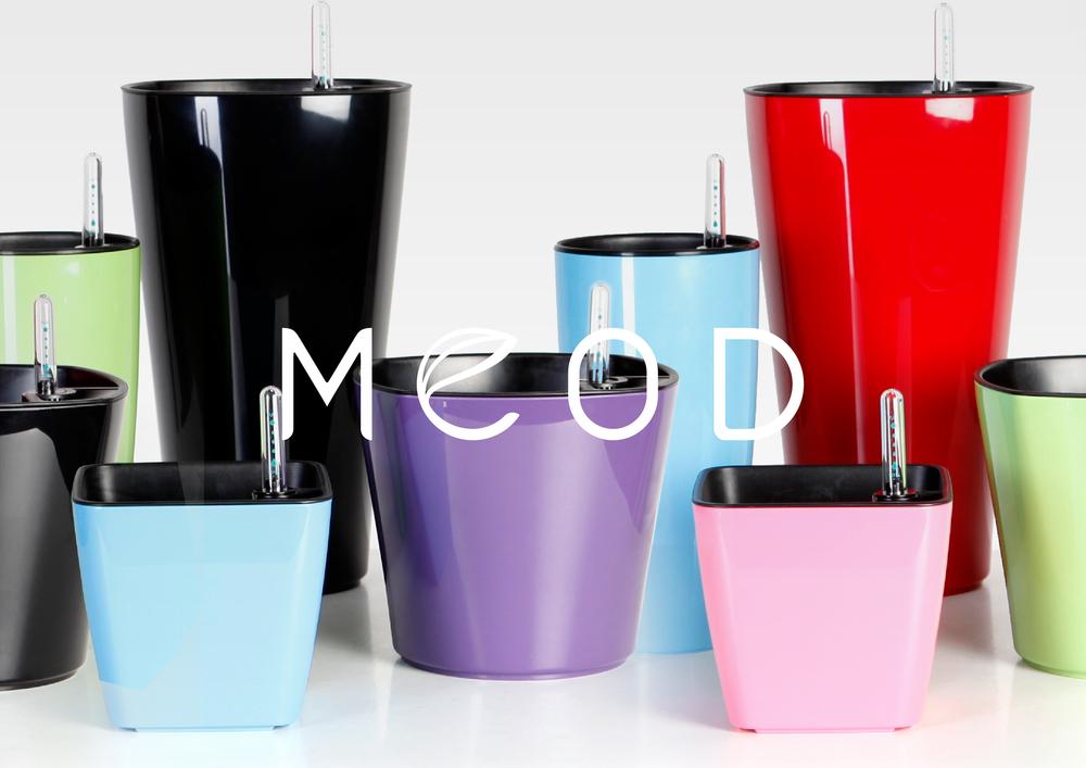 MEOD-04.jpg
