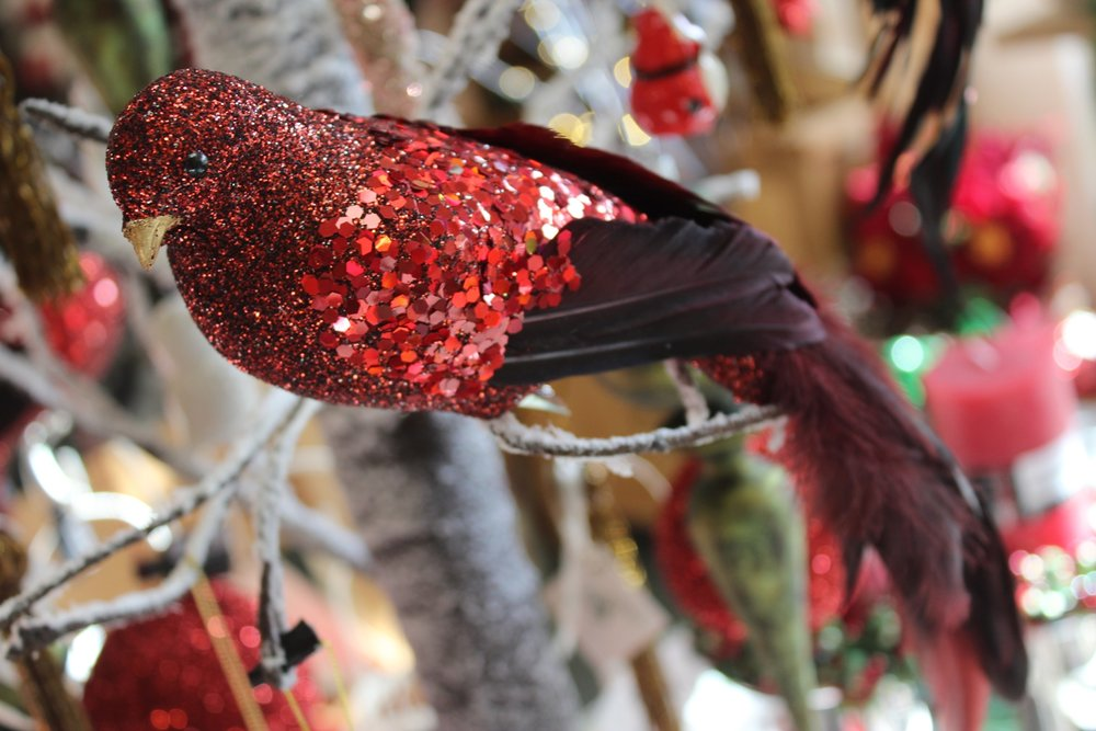 Deep Red Bird - €11.00