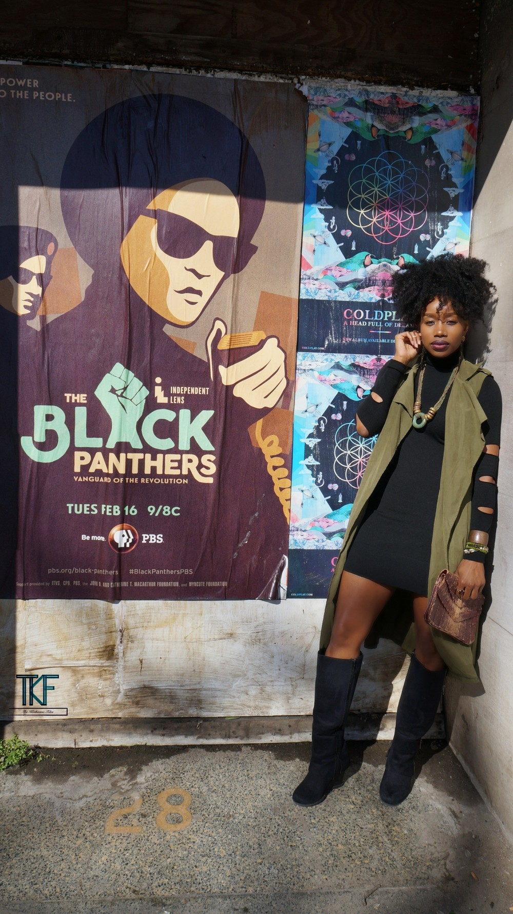 Black-panther-documentary.jpg