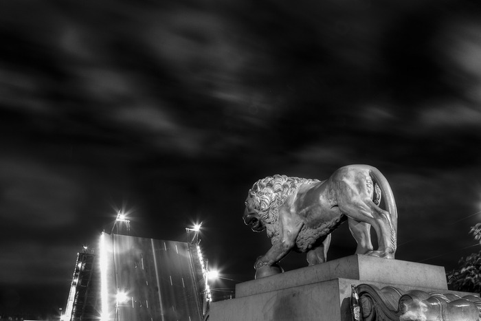 A black and white night photo of a stone lion in front of a drawn bridge on the Neva River on Navy Day in St. Petersburg, Russia