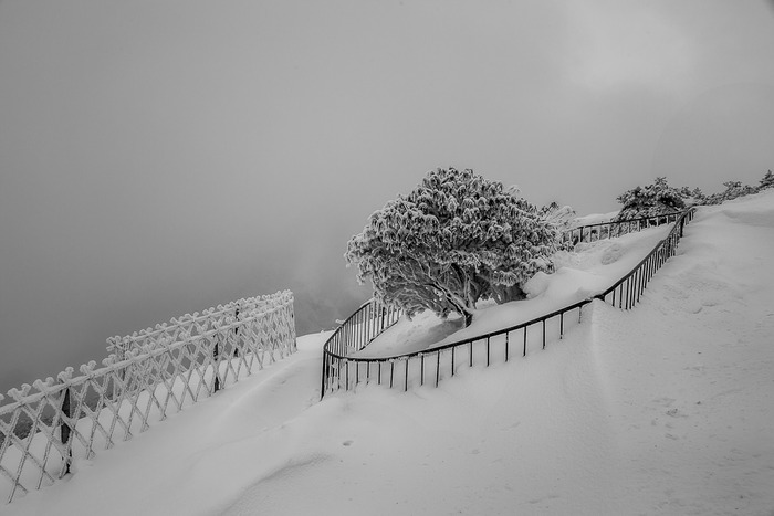 Conservation area atop Huangshan (Yellow Mountain) in Eastern China during winter