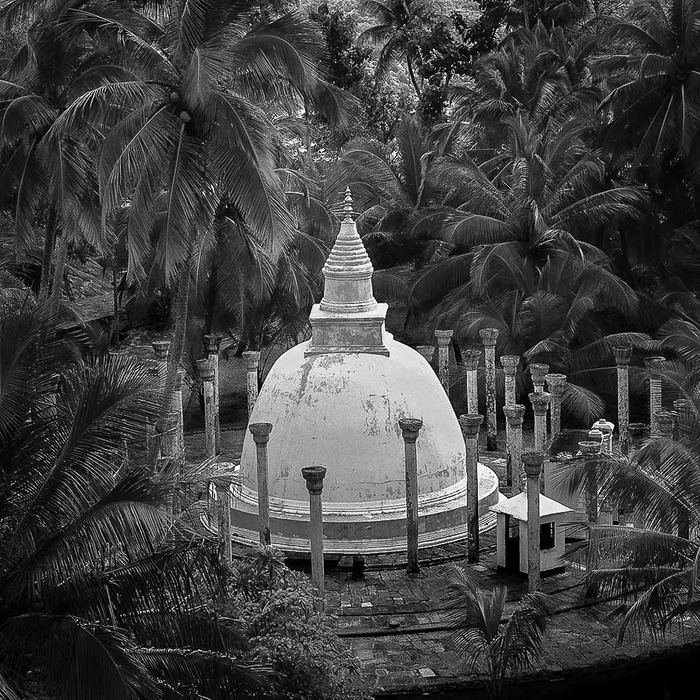A beautiful Stupa, surrounded by palm trees, in Mihintale, Sri Lanka