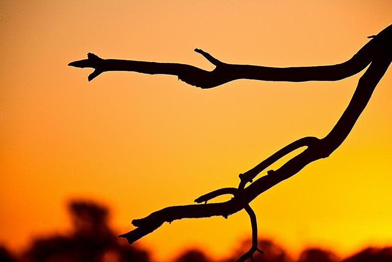 sunsetmildura9313.jpg