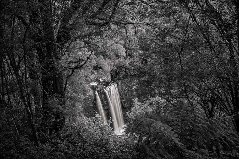 Lookout, Erskine Falls, Great Otway National Park Leica M9 camera and Leica Summicron 35mm f2 lens.