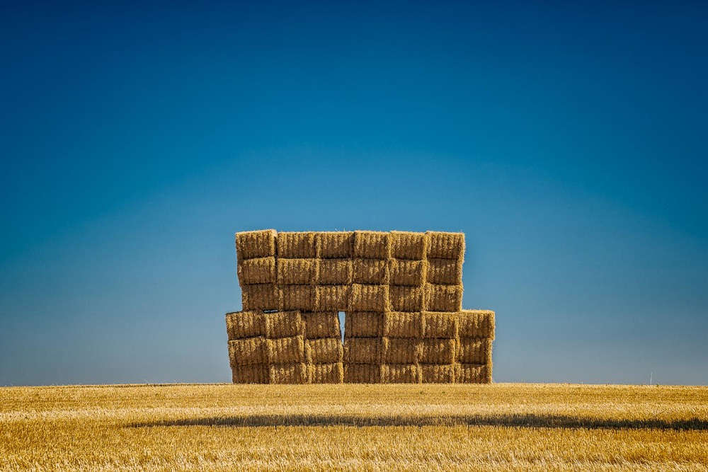 Hay Bales, Old Crusher Road, Byaduk, Australia Nikon D800e camera with Nikon 24-120mm f4 lens @ 120mm. Exposure: 1/6 second @ f11 ISO 100.
