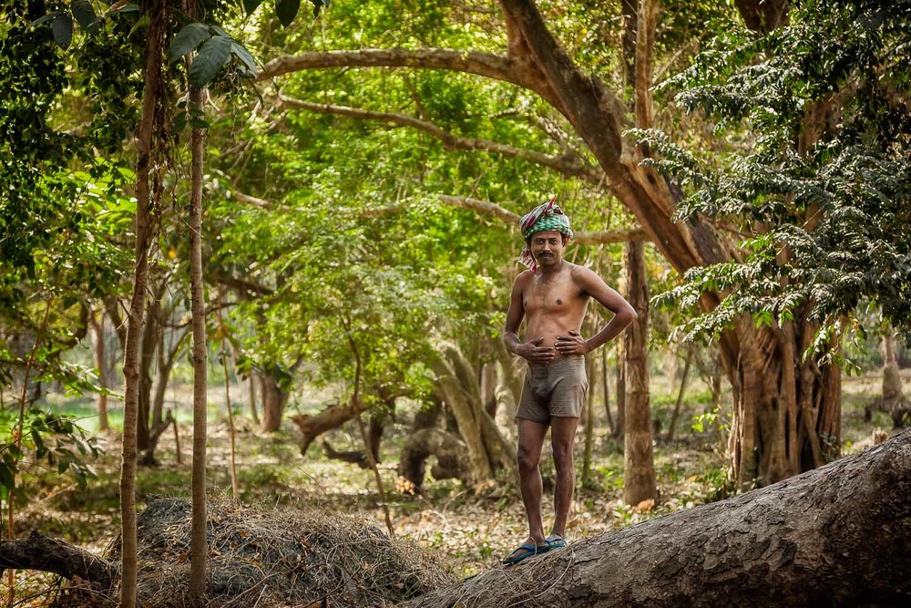 A working man in the lovely, albeit wild, grounds of the Botanical Gardens in Kolkata, India.