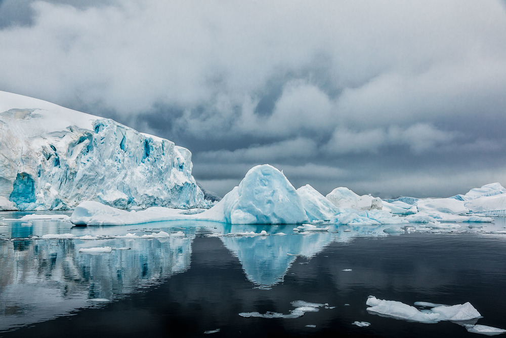 Zodiac Cruise, Cuverville Island, Antarctica