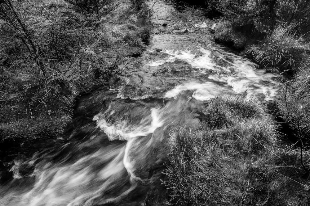 A gentle stream flowes through Tierra del Fuego National Park, Argentina.